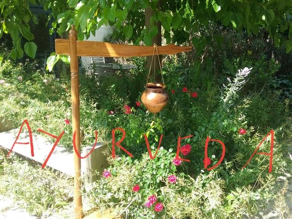 Ayurveda, une invitation au bien-être du corps et de l'esprit